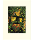 Green Man von Digby Curtis