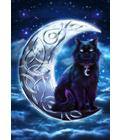 Celtic Black Cat