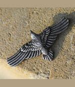 Fliegender Rabe