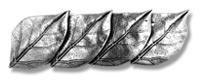 Haarspange Neue Blätter